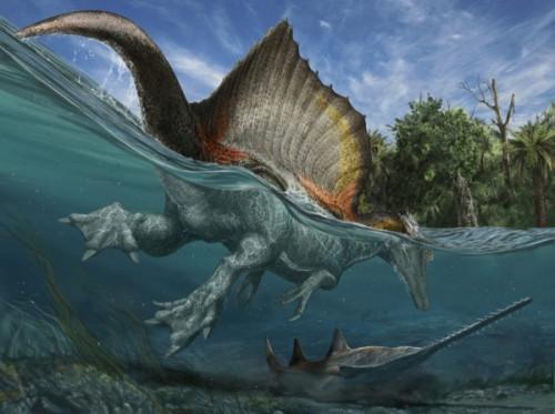 spinosaurus-aegyptiacus